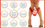 Основные причины цистита у женщин — диагностика