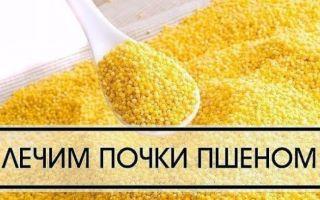Как используется пшено для лечения почек: старинные рецепты и советы