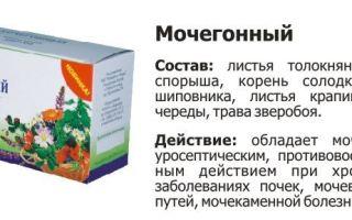 Мочегонные травы для лечения почек у детей и взрослых