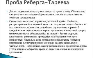 Как сдать пробу Реберга Тареева и о чем говорит