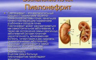 Что такое пиелонефрит почек и как его лечить