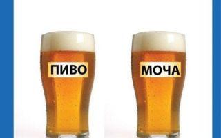 Моча цвета пива — причины и что деать