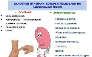 Что такое разрыв мочевого пузыря
