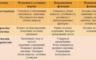 Гормоны надпочечников, вырабатываемые корой железы и их функции