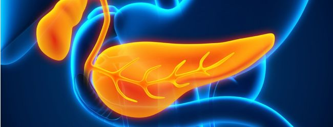 Что такое амилаза панкреатическая в анализе крови понижена
