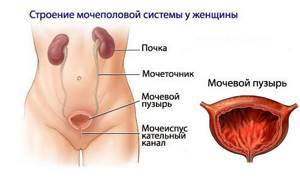 Больно писать женщине или девушке: причины и симптомы провоцирующих заболеваний, лечение и профилактика