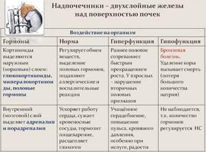 Функции гормонов мозгового вещества надпочечников