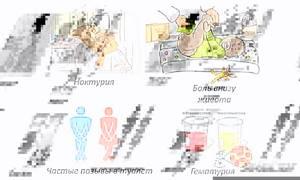 Использование уроантисептиков при болезнях мочеполовой системы