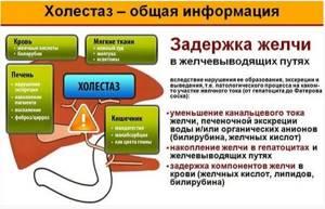 Желчь в печени: причины застоя, тактика лечения патологии