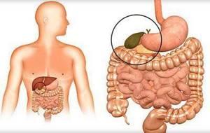 Токсическое поражение печени – пагубное воздействие внешних факторов