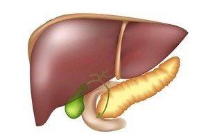 Причины утолщения стенок желчного пузыря и лечение коварного заболевания