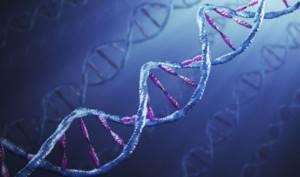 Анализ на гепатит – важное лабораторное исследования для диагностирования заболевания