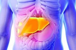 Персистирующий гепатит – сложности диагностики воспаления печени