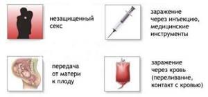 Гепатит С: сколько живет во внешней среде и в разных условиях