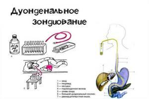 Желчные кислоты: анализ крови на функционирование печени и ее структур