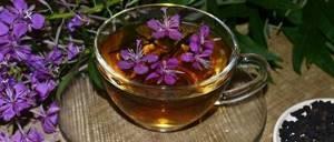 Иван-чай для печени – народное средство для выведения токсинов