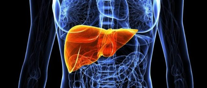 Как диабет влияет на печень: утрата функциональности, разрушение клеток