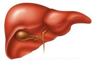 Резалют или Фосфоглив: что лучше – решает гепатолог с учетом диагноза