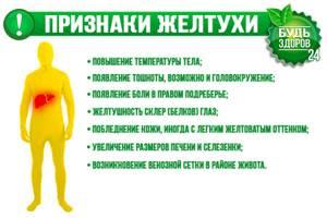 Диета при желтухе: что можно и что нельзя включать в рацион