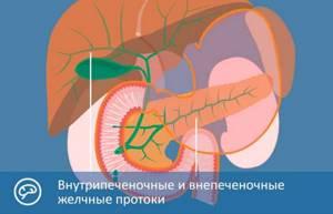 Атрезия желчевыводящих путей – перекрытие выхода из желчного пузыря