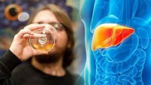 Алкоголь и печень: вред и особенности влияния