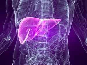 Аутоиммунный гепатит: причины, симптомы, лечение