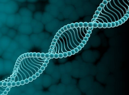 Синдром Криглера-Найяра – нарушение строения гена второй хромосомы