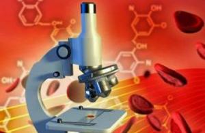 Печеночные трансаминазы: какова их роль в организме человека