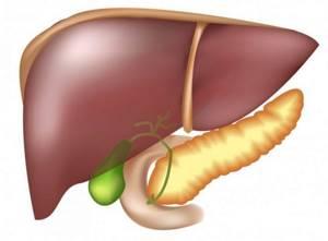 Дистрофия печени — видоизменение клеток органа