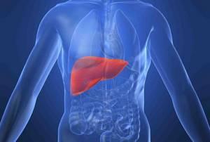 Фульминантный гепатит – опасная форма воспаления при гепатите В