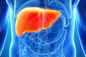 Стеатогепатит: что это такое, характерные симптомы и методы лечения