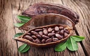 Вреден ли шоколад для печени: аргументы «за» и «против»