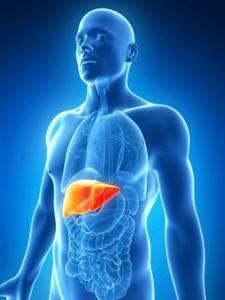 Гепатит c: лечение народными средствами, правила терапии