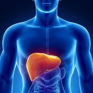 Киста печени: симптоматика и лечение