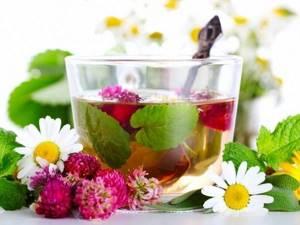 Шиповник при желчнокаменной болезни – действенный рецепт фитотерапии