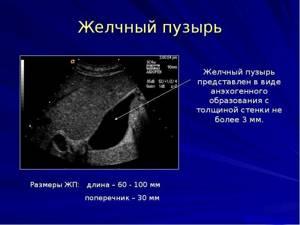 Подготовка к УЗИ печени и желчного пузыря и поджелудочной железы: основные аспекты