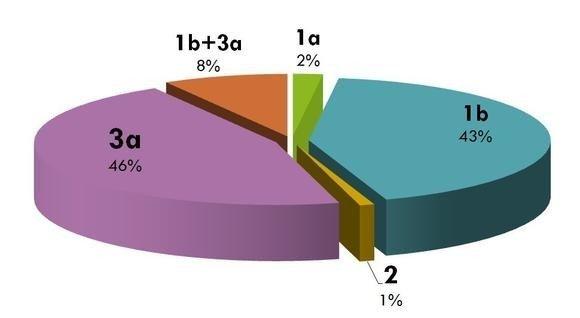Отличия гепатита c с генотипом 1b от других форм вирусного поражения печени