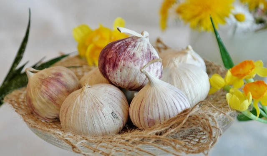 Продукты полезные для печени: что употреблять для восстановления органа