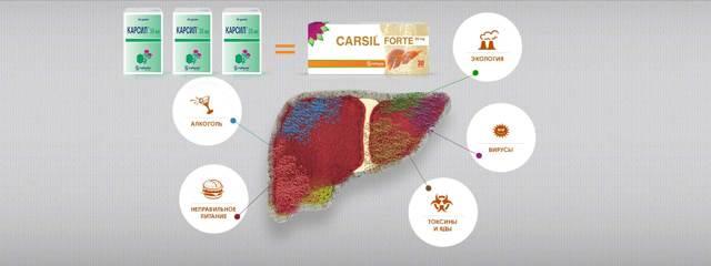 Что лучше – Карсил или Карсил Форте: состав, назначение и стоимость
