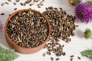 Расторопша для печени: полезные свойства, применение
