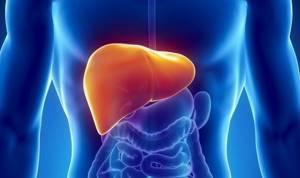 Диета при жировом гепатозе печени: основные аспекты