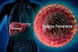 Гепатит А: что это такое и как передается инфекционный процесс?