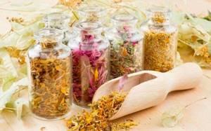 Употребление желчегонных трав и других средств для очистки печени