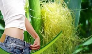 Кукурузные рыльца: полезные свойства, способы применения и противопоказания