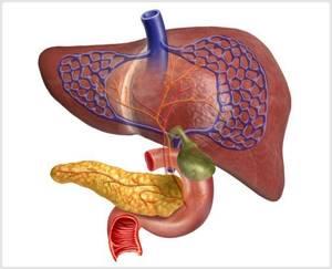 Лечение желчного пузыря народными средствами: эффективные рецепты