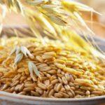 Печеночный сбор – источник полезных компонентов для здоровья печени
